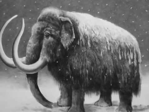 A gigantic Woolly Mammoth, drawn with charcoal
