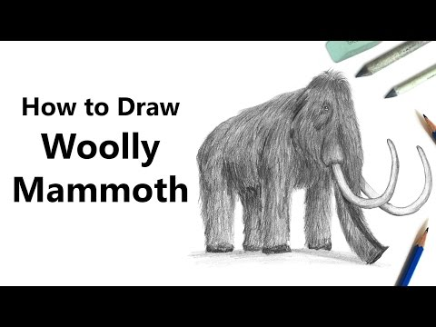 How to Draw a Woolly mammoth with Pencils [Time Lapse]