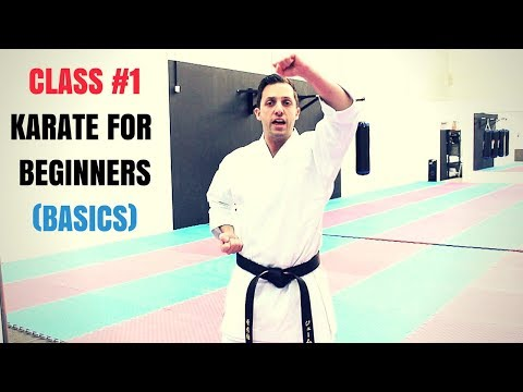 Martial Arts for Beginners – Lesson 1 / Basic Karate Kid Techniques